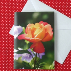 Glückwunschkarte - Blumenmotiv